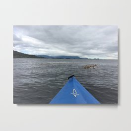 FRONT ROW SEAT - SITKA, ALASKA Metal Print