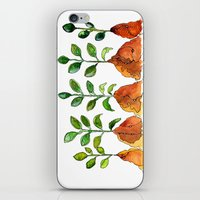 succulents iPhone & iPod Skins featuring Succulents by Gosia&Helena