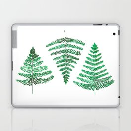 Fiordland Forest Ferns Laptop & iPad Skin