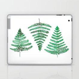 Fiordland Forest Ferns Laptop & iPad Skin