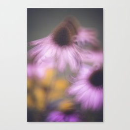 whispy flowers Canvas Print