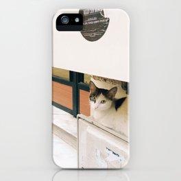 kedi.2 iPhone Case