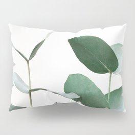 Eucalyptus 5 Pillow Sham
