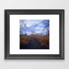 Hawaiian Trail Framed Art Print