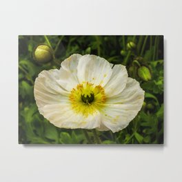 Medium Sized Flower Metal Print