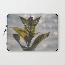 Silver Lake Laptop Sleeve