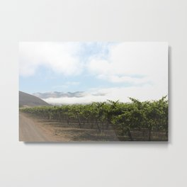 Fog Clearing Metal Print