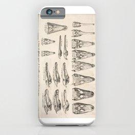Crocodiles iPhone Case