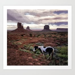 Horse in the Valley Art Print