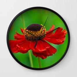 Summer flowers 0219 Wall Clock