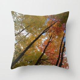 Fall canopy Throw Pillow