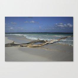 Carribean sea 14 Canvas Print
