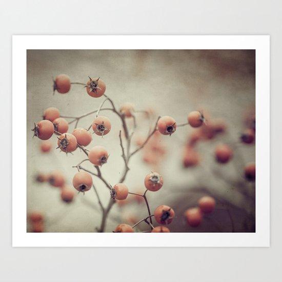 tiny apples Art Print