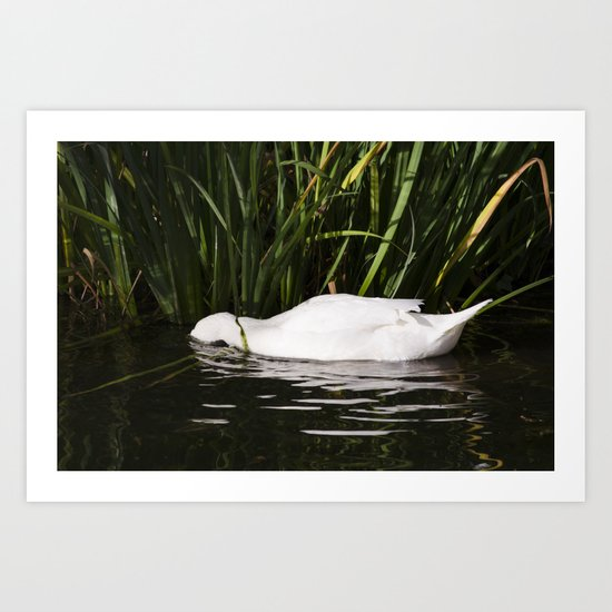 Sleep in the water Art Print