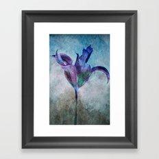 A Misterious Flower Framed Art Print