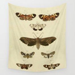 Vintage Moths Wall Tapestry