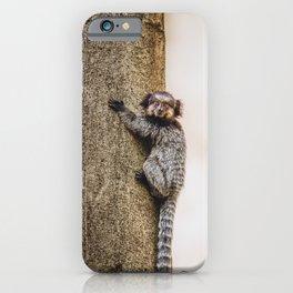 Black-Tufted Marmoset Monkey Photo iPhone Case