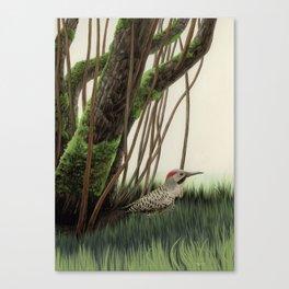 Flicker of Garden Canvas Print