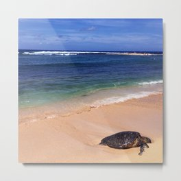 Turtle at Poipu Beach Metal Print