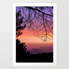 Purple sunset. At the woods Art Print