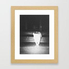 hollaback cat Framed Art Print