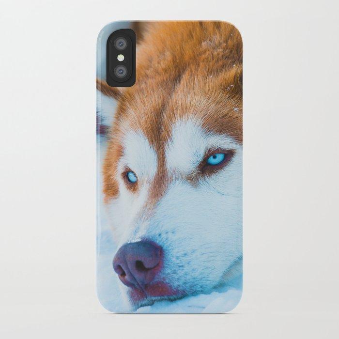 Sleepy Orange Siberian Husky Color Iphone Case By Nocolordesigns