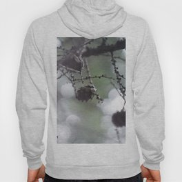 Live Forest Hoody