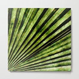 Green Palm Tree Frond Metal Print