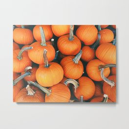 Pumpkin Party Metal Print