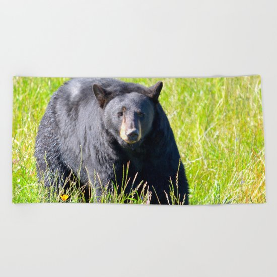 Alaskan Black Bear II Beach Towel