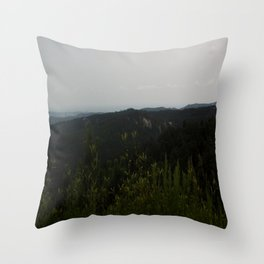 Peak of Nature Throw Pillow
