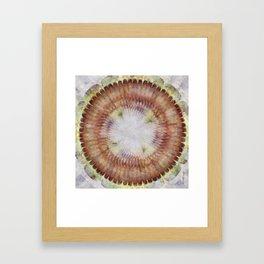 Zain Content Flowers  ID:16165-074458-48710 Framed Art Print