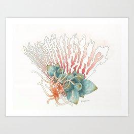 Fan Reef Art Print