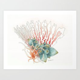 Fan Reef Art Print