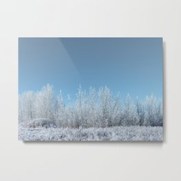 A Line of Frosted Trees Metal Print