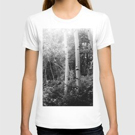 The Aspen Grove, No. 2 T-shirt