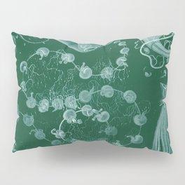 Ernst Haeckel Siphonophorae Hydrozoan Pillow Sham