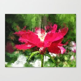 Red Volcano Canvas Print