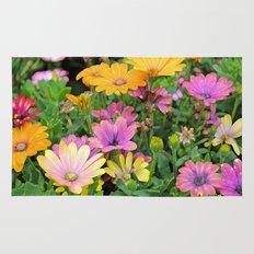 Colorful Spanish Daisies Rug