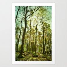 spring woods II Art Print