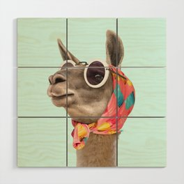 FASHION LAMA Wood Wall Art