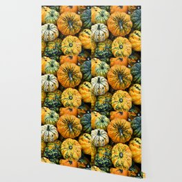 Decorative Pumpkins Wallpaper