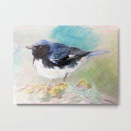 black-throated blue warbler Metal Print