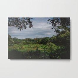 Mexican landscape Metal Print