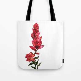 Illustrated Indian Paint Brush Tote Bag