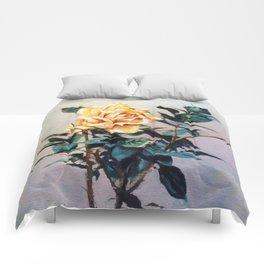 Rosa/Rose Comforters