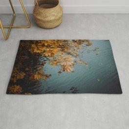 Autumn Copper + Teal Rug