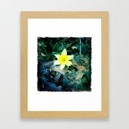 Thaw Framed Art Print