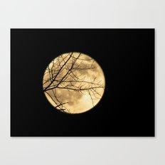 Shadows on the Moon Canvas Print