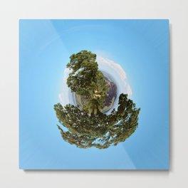 A Small World, the Grand Canyon Metal Print